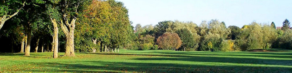 Golf fields in London